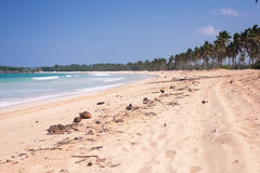 Natural Beach. View of a natural beach in Dominican republic Stock Images