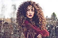 Natural beautiful lady in autumn landscape. Outdoor lifestyle fashion photo of young natural beautiful lady in autumn landscape with dry flowers. Knitted sweater Royalty Free Stock Images