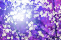 Natural beautiful purple Bokeh - Blur Tree and Park background Stock Image