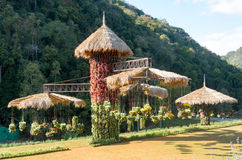 Natural and beautiful tropical garden Royalty Free Stock Images