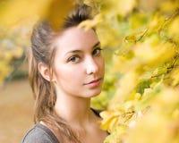 Natural beauty. Stock Image