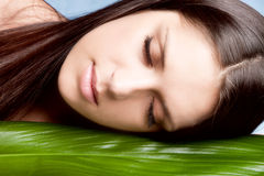Natural beauty. Woman portrait with leaf  eyes closed studio shot horizontal Stock Images