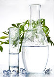 Natural beauty. Glasses with  organic creative background . Natural beauty Stock Images
