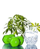 Natural beauty. Glasses with  organic creative background . Natural beauty Stock Photos