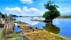Natural beauty of Bangladesh Stock Image