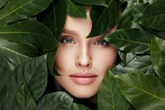 Natural Beauty. Beautiful Woman Face In Green Leaves. stock photos