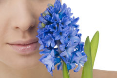 Natural beauty with bluebell Stock Photos