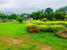 Beautiful natural view Stock Photos