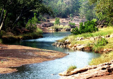 Natural beauty landscape. Natural beauty, a small river through the satpura forest india royalty free stock photography