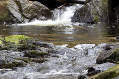 Natural beauty of the mountain river Royalty Free Stock Photography
