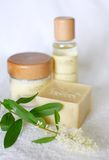Natural Beauty products Stock Photography