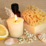 Natural Beauty Products royalty free stock photo
