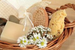 Free Natural Beauty Products Stock Photography - 8430182