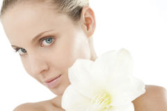 Natural Beauty With Amaryllis Stock Images