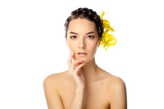 Natural Beauty woman royalty free stock images