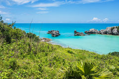 Natural Bermuda. Green foliage and morning glories surround this tranquil seascape of Tobacco Bay in Bermuda Royalty Free Stock Image