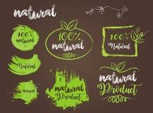Natural Bio Badge Logo Vector Stock Images