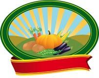 Natural bio vegetables symbol Royalty Free Stock Photo