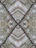 Birch tree bark surface texture Stock Photography