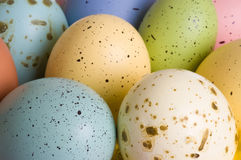 Natural Bird Eggs Stock Photography