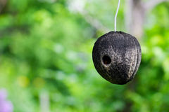 Natural Birdhouse Royalty Free Stock Photography
