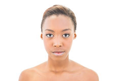 Natural black beauty posing Stock Photography