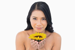Natural black haired model holding sunflower Royalty Free Stock Photos