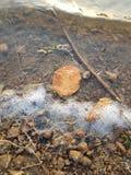 Natural bliss. Nature beauty autumn leaf water beach mystique stock photos