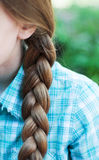 Natural blonde braided hair Stock Photography