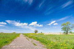 Natural blooming meadow vanishing footpath and blue sky Royalty Free Stock Photos