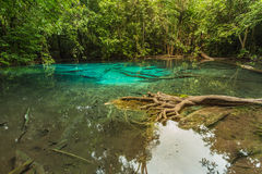 Natural Blue Lagoon located in deep forest jungle Royalty Free Stock Photo