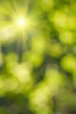 Natural blurred background. Element of design stock illustration