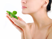 Natural Body Care. Green plant Royalty Free Stock Image