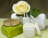 Natural for body care Stock Image