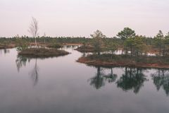 Natural body of water. pond with reflections - vintage retro loo. Natural body of water. pond with reflections of trees and clouds in calm water surface royalty free stock photo
