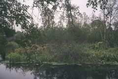 Natural body of water. pond with reflections - vintage retro loo. Natural body of water. pond with reflections of trees and clouds in calm water surface stock photography