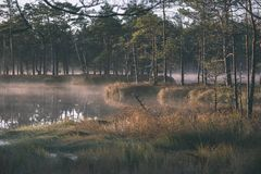 Natural body of water. pond with reflections - vintage retro loo. Natural body of water. pond with reflections of trees and clouds in calm water surface stock image