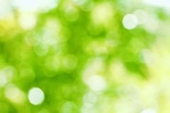 Natural Bokeh Stock Image
