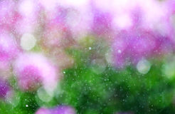 Natural bokeh background with drops of rain. In purple and green colors stock illustration