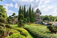 Natural bonsai tree garden Lush green parks fotos de archivo libres de regalías