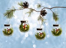 Natural branches of the Christmas tree with a glass Christmas toy on blue background royalty free stock photo