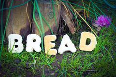 Natural Bread. The word BREAD in a natural garden setting royalty free stock photo