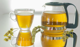Natural brewed Mountain Tea. In the world of Alternative Medicine herbal teas stock image