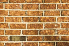 Natural Brick Wall Stock Photography