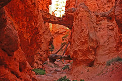 Natural Bridge. Picture of a natural bridge in Bryce Canyon with a person in the frame for scale Stock Image