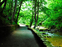 Natural Bridge Path stock photos