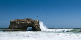 Natural Bridge State Park at Santa Cruz with sprea Royalty Free Stock Image
