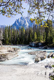 Natural Bridge, Yoho National Park, Alberta, Canada Royalty Free Stock Image
