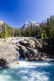 Natural Bridge, Yoho National Park, Alberta, Canada Stock Images