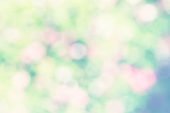 Natural bright  blurred background Stock Photography